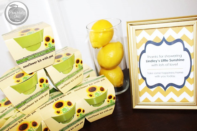 fit the theme perfectly for this you are my sunshine baby shower