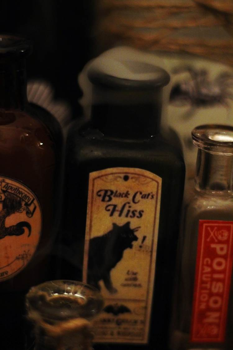 Peachfully-Chic-DIY-Halloween-Potion-Bottles-Labels-Penguin-Dry-Ice-Ideas-3