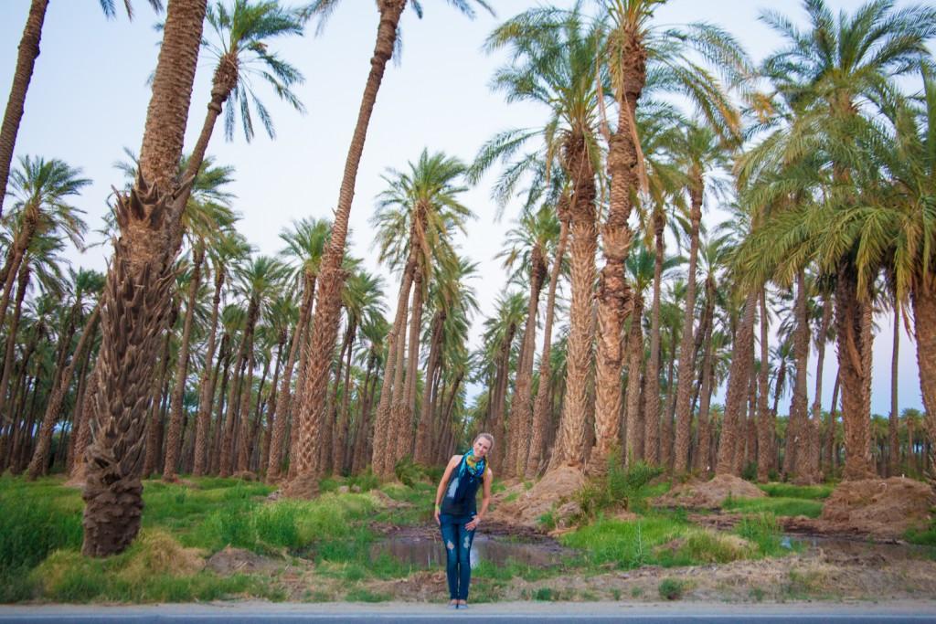 Coachella-Recap-Behind-The-Scenes-Palm-Breeze-Tent-16