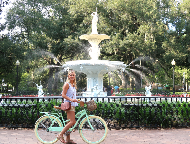 Savannah Video Guide