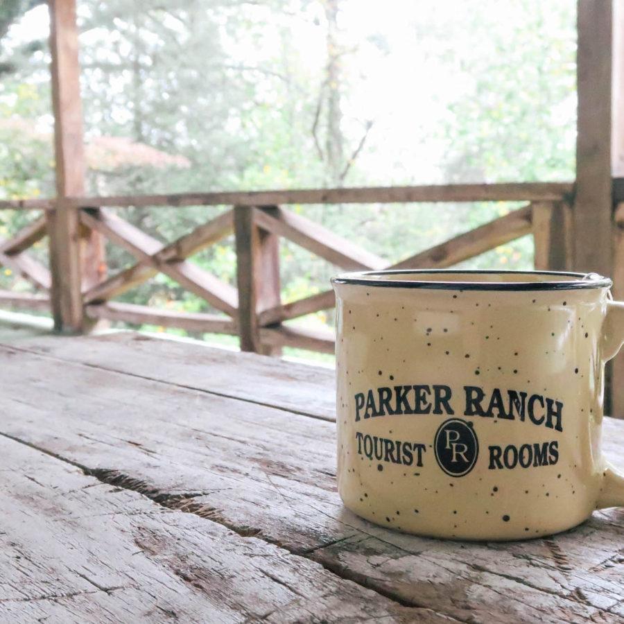The-Parker-Ranch-B&B-Clayton-GA
