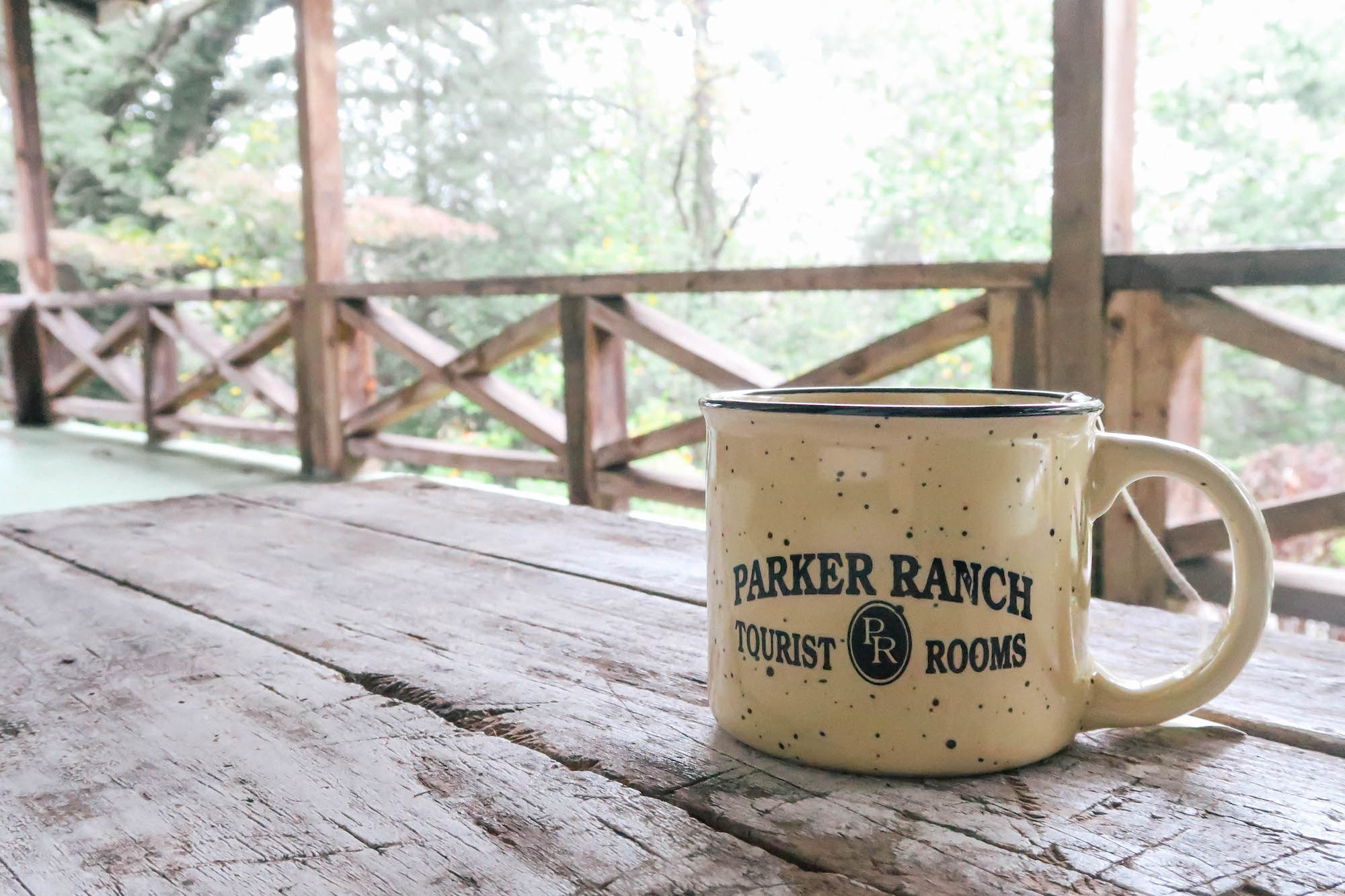 The-Parker-Ranch-B&B-Clayton-GA