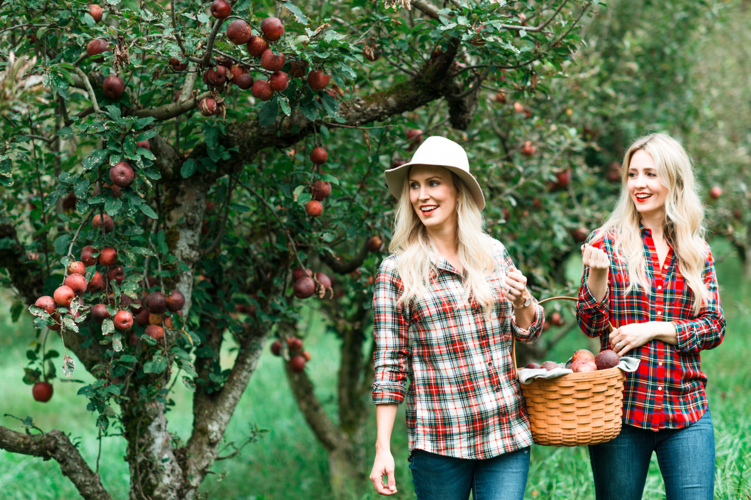 allison-cawley-city-peach-mireille-beckwith-apple-picking-1