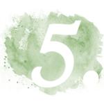 green-icon-5